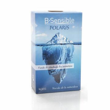 B-Sensible-Polaris-Kissenbezug und Spannbettlaken