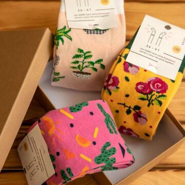 Socken Box: Die Wüste lebt, möchte aber trotzdem gegossen werden.