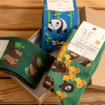 Socken Box Die Bären sind los in deinem Kleiderschrank.