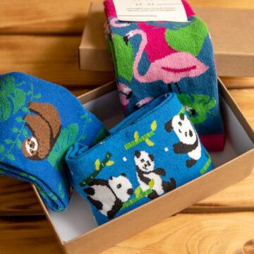 Socken Box: Weckt das Faultier, Koala und Flamingo!