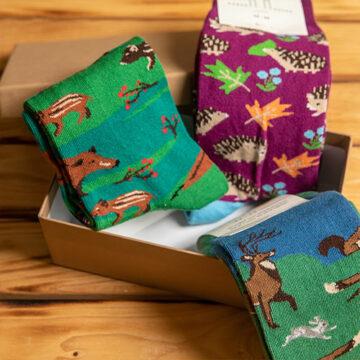 Socken Box: Wo sich Fuchs und Hase gute Nacht sagen. Und der Igel auch.