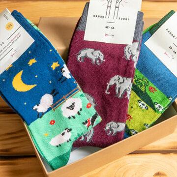 Socken Box: Der dicke Elefant im doppelten Schafspelz